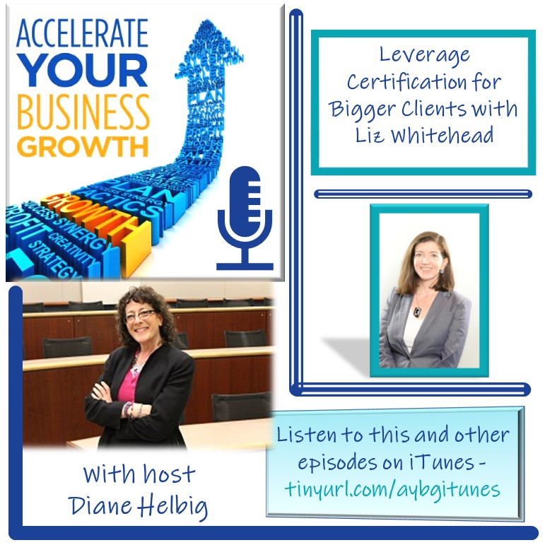 A visual of Diane Heilbig host of the Accelerate Growth Podcast and Liz Whitehead, CEO of 12PointFive